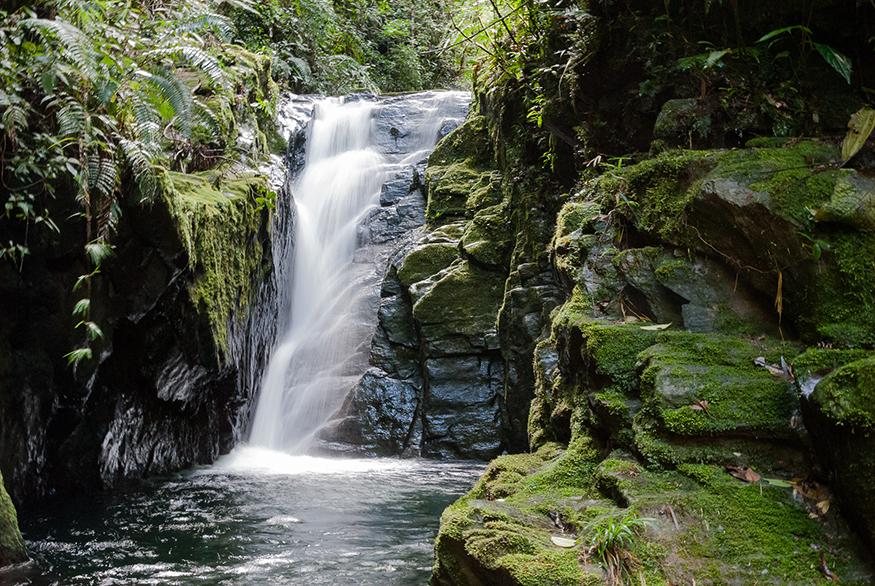 cascada-en-selva-bolivia
