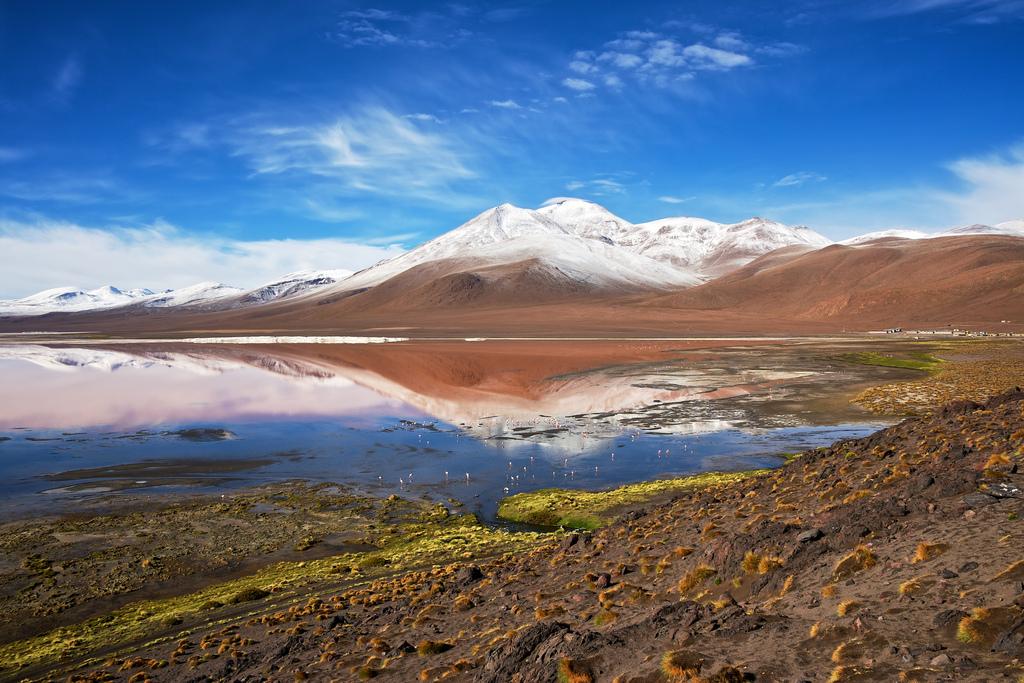 laguna-colorada-paisaje